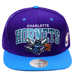 The Charlotte Bobcats to become the Charlotte Hornets