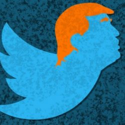 Tweet at Donald Trump and your account may be flagged as 'potentially abusive'